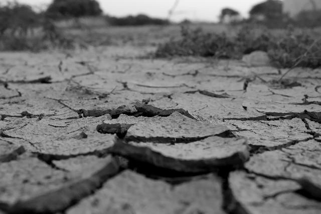 白黒 乾燥した大地