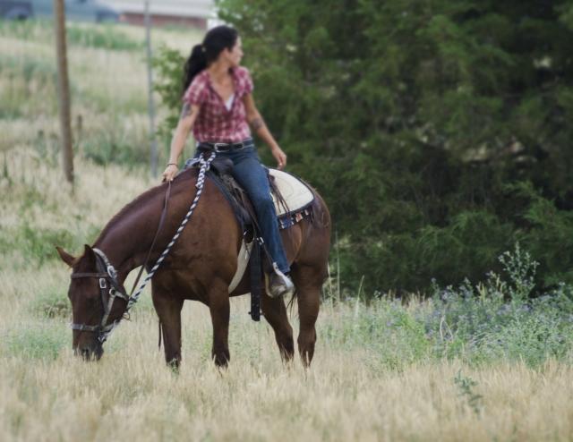 乗馬をしている風景2