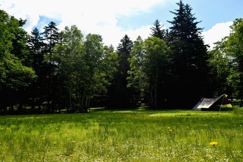 大自然でキャンプ テント